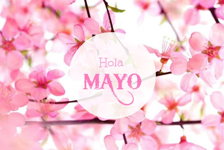 Image result for hola mayo
