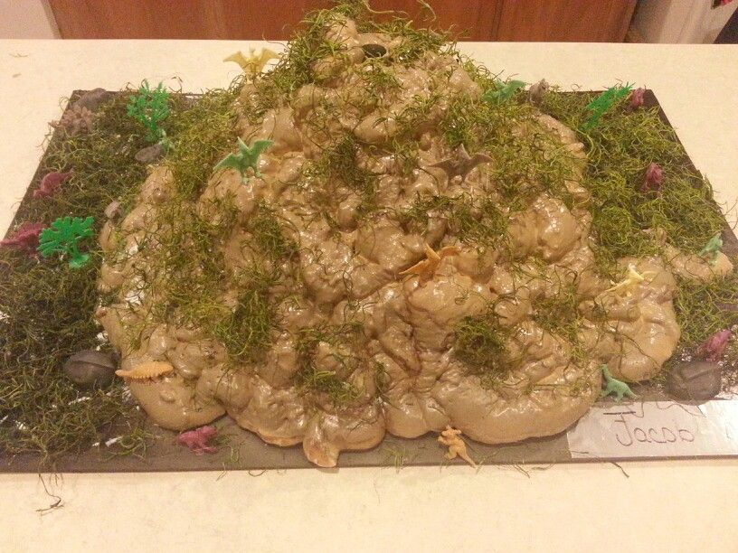 Volcano made out of the spray foam insulation in a can.  Then spray painted with moss grass and dinosaurs glued on.