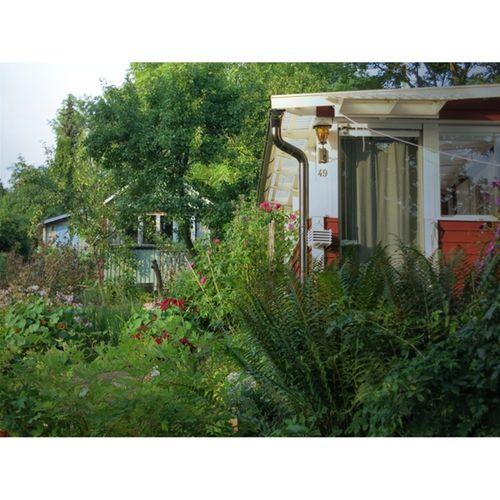 Tango's gardens N°2 - photographie