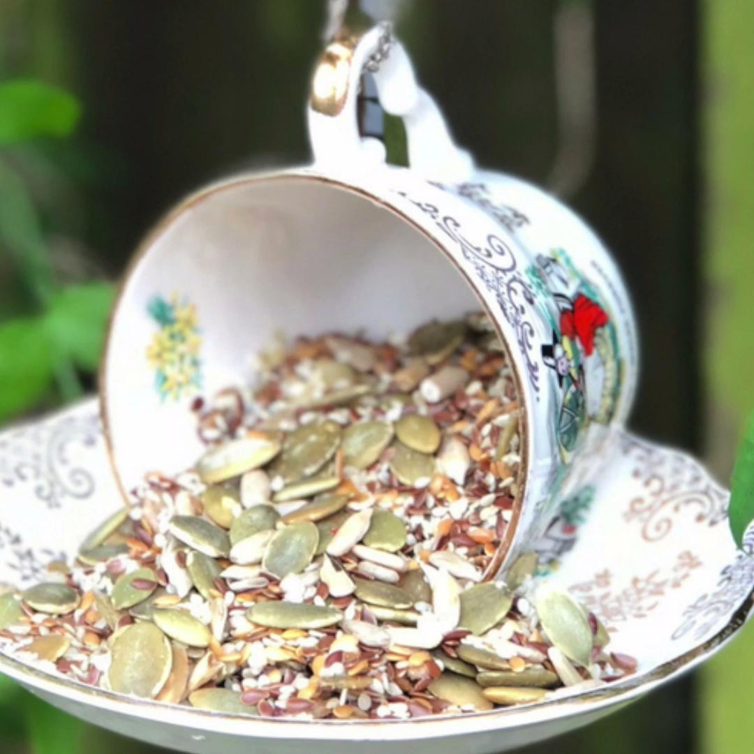 Teacup and Saucer Bird Feeder