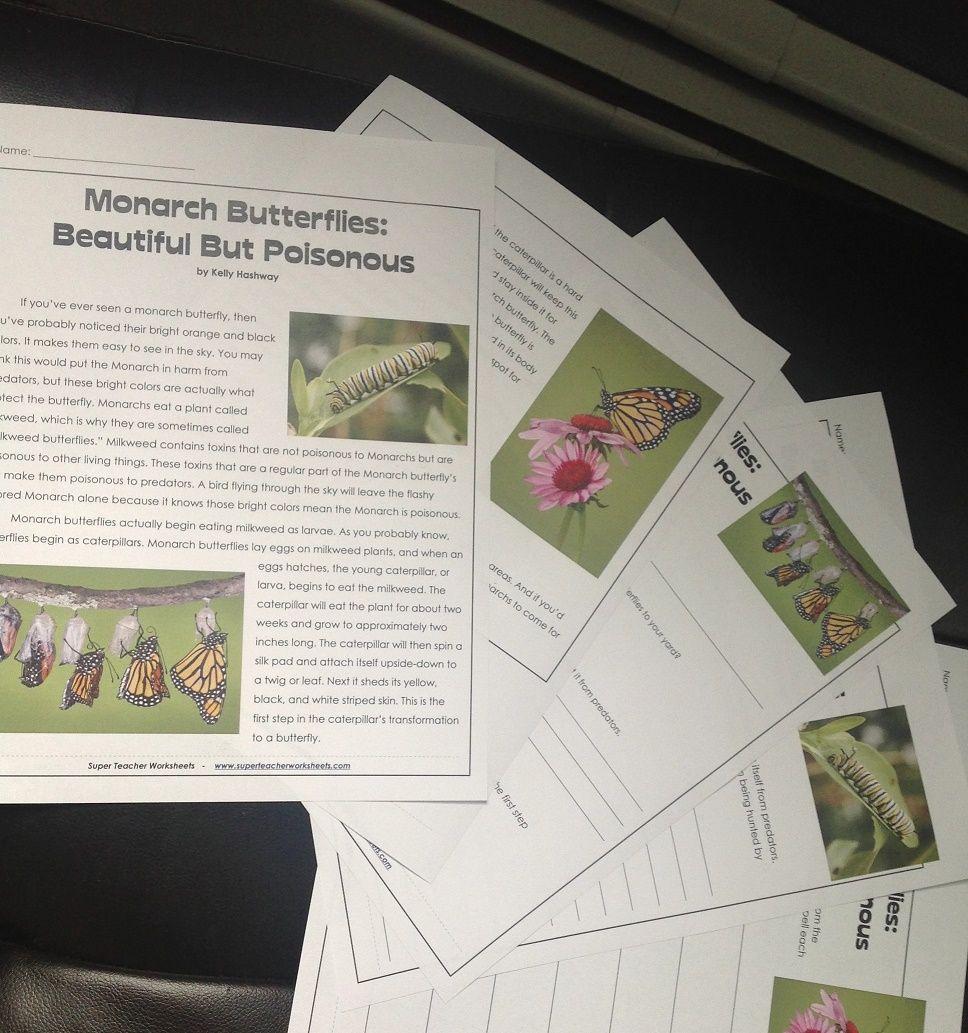 Monarch Butterflies Monarch Butterfly Super Teacher Worksheets Science For Kids [ 1033 x 968 Pixel ]