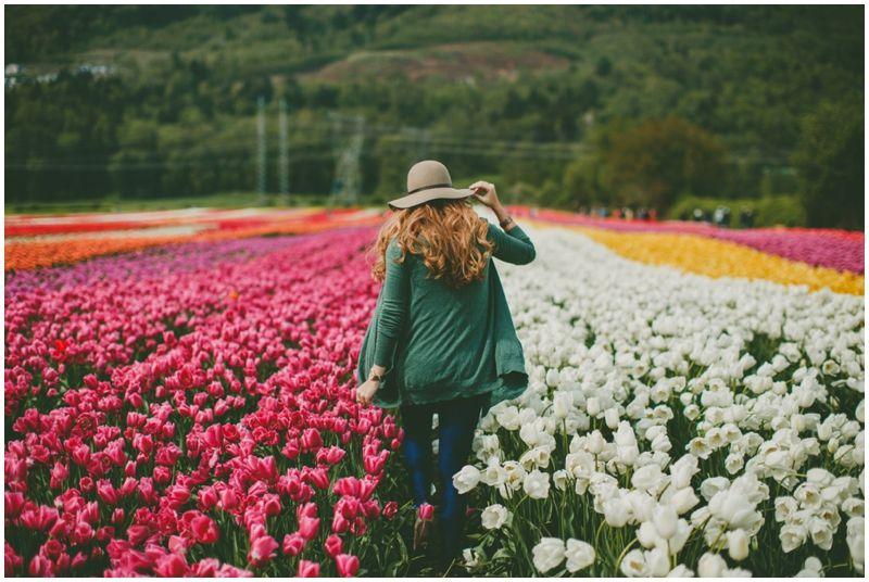 Rachelbarkman Com Spring Photography Tulip Festival Location Photography