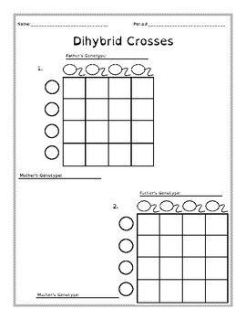 Dihybrid Cross Gamete Charts Dyslexia Blank Di-Hybrid 9:3
