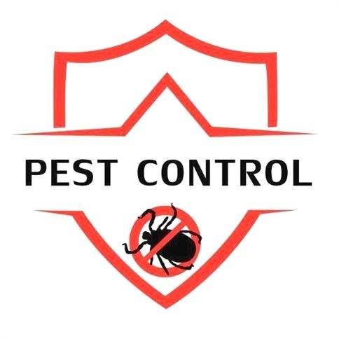 Pin On Pest Control Roaches