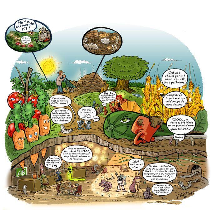 Dessin Jardin Bio Culture Des Legumes Dessin Jardin Culture Bio