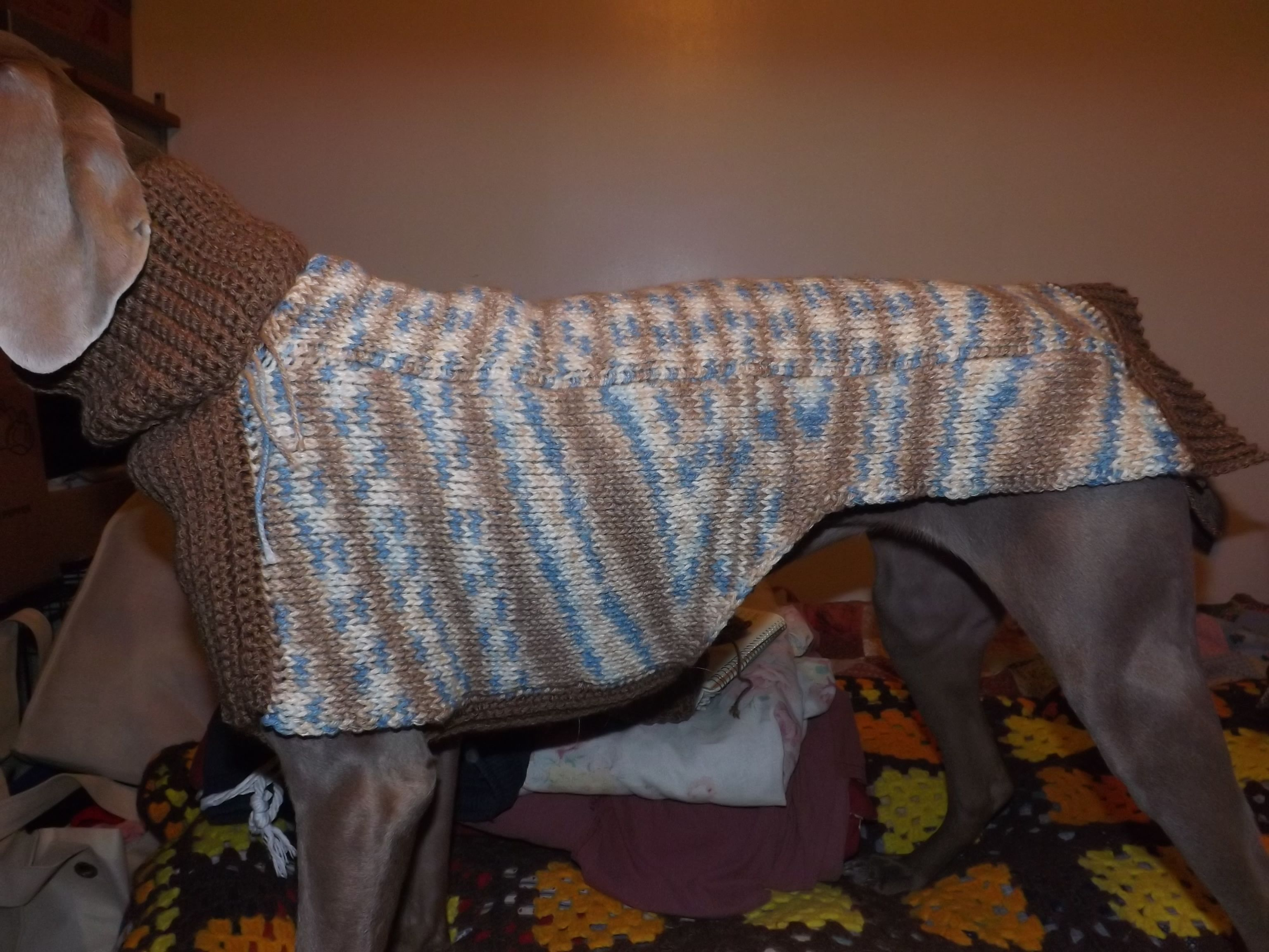 Sweater I made for my Weimaraner. Multi-colored back and sides done ...