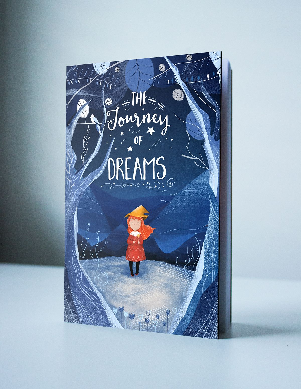 """""""The Journey of Dream"""" book cover on Behance"""