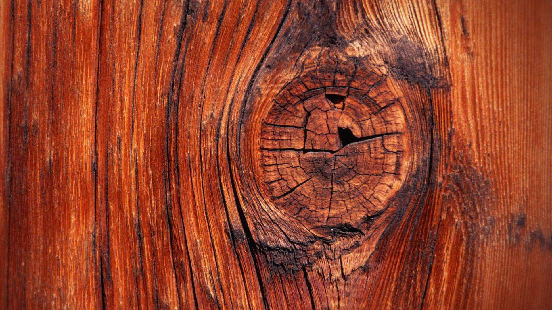 Hd wallpaper wood - Hd Wood Backgrounds Wallpaper