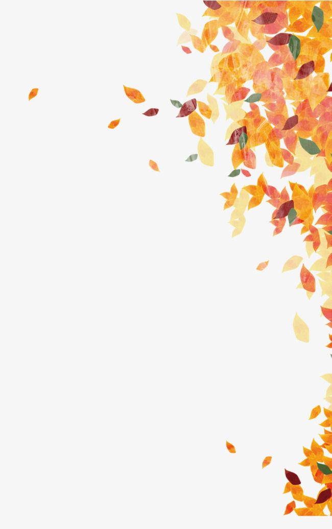 fall leaves png # 10