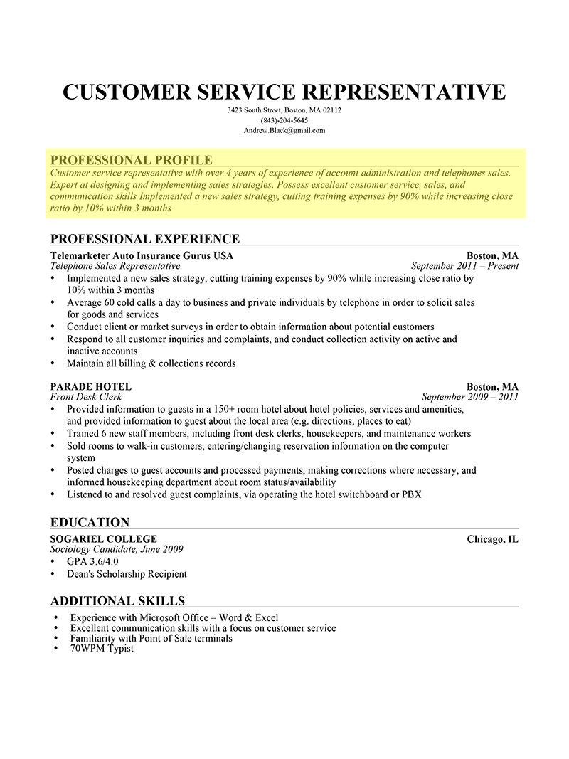 Resume Profile Resume profile examples, Professional