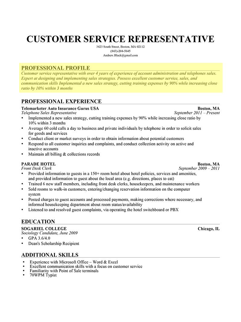 Resume Profile Resume profile examples, Professional