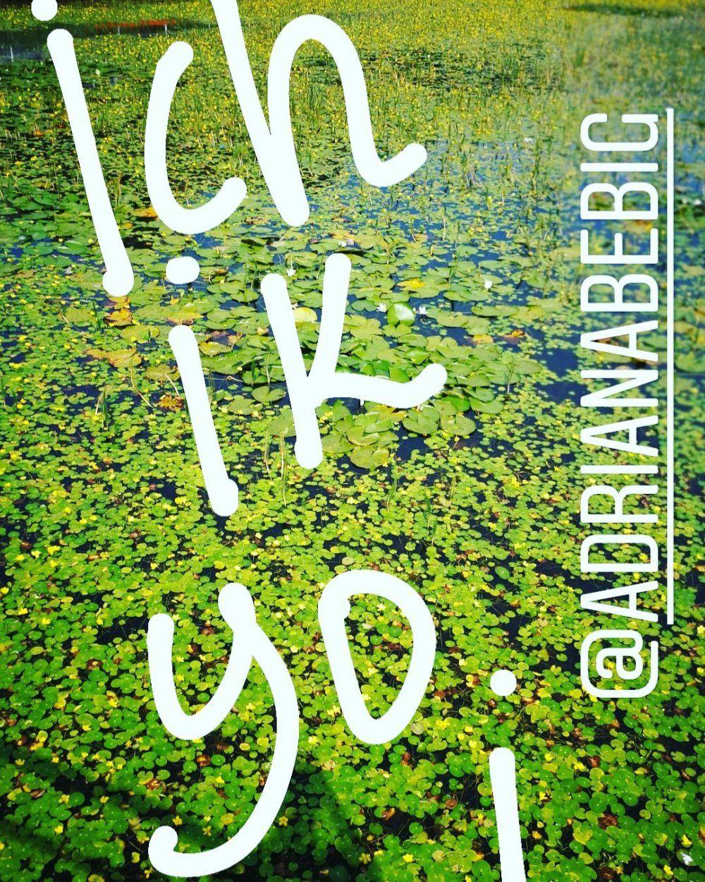 Dale la vuelta a tu libro – AdrianaBeBig | Empowerment