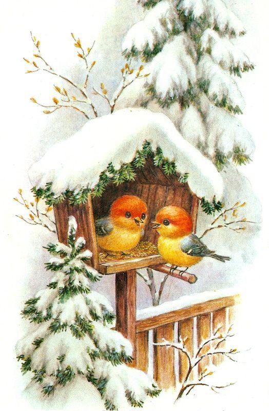 Новогодние картинки птички, лет совместной
