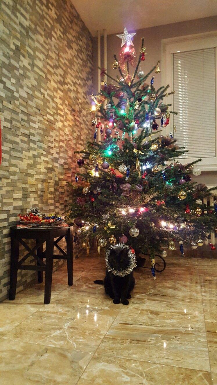 Vianoce 2016