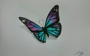 Mariposas Para Dibujar A Lapiz Buscar Con Google Mariposas A Lapiz Como Dibujar Mariposas Dibujos
