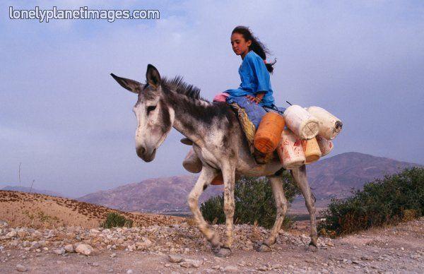 Girl of Berber tribe on donkey transporting water. - Lonely Planet Images  - travel inspires understanding #ExpediaWanderlust