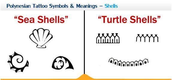 Polynesian Tattoo Symbols Meanings Shells Marquesan Tattoos