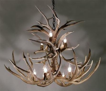 Inspiring jason miller antler chandelier ideas cool deer antler inspiring jason miller antler chandelier ideas cool deer antler chandelier mozeypictures Image collections