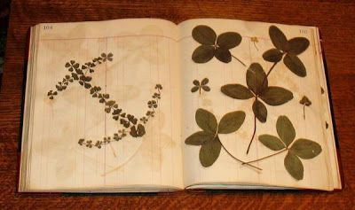 Anonymous Works: Alda Carlson's One Thousand Three Hundred and Fifty Five Four Leaf Clovers Collected From 1910 to the 1920's