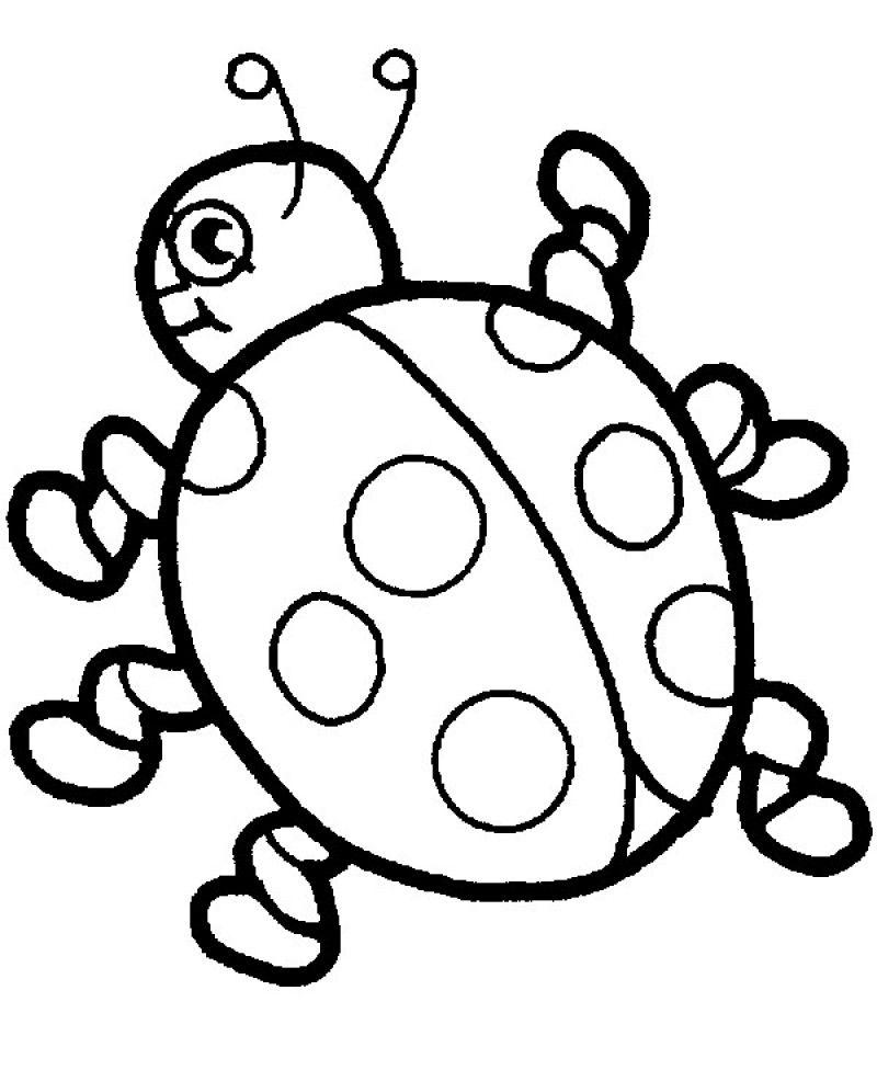 Printable Ladybug Coloring Pages Ladybug Coloring Page Bug Coloring Pages Summer Coloring Pages
