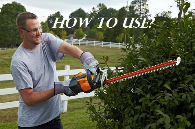 How To Use Electric Hedge Trimmer Gardening Garden Diy Home Flowers Roses Nature Landscaping Horticulture Hedge Trimmers Hedges Organic Gardening