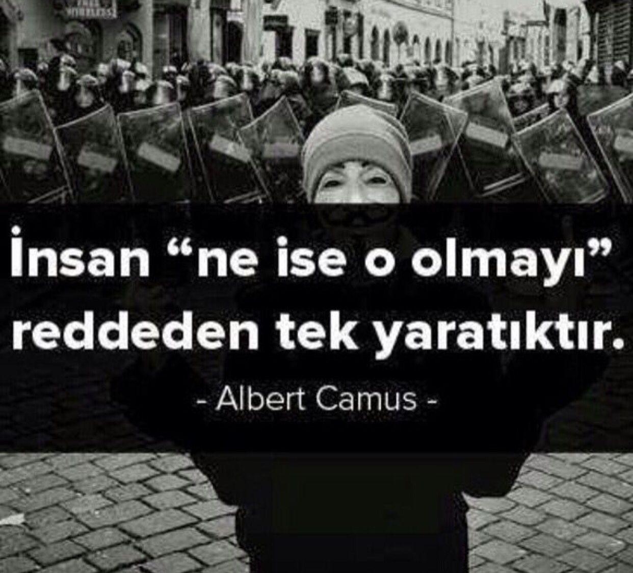 """insan """"ne ise o olmayı"""" reddeden tek yaratıktır.  Albert Camus"""