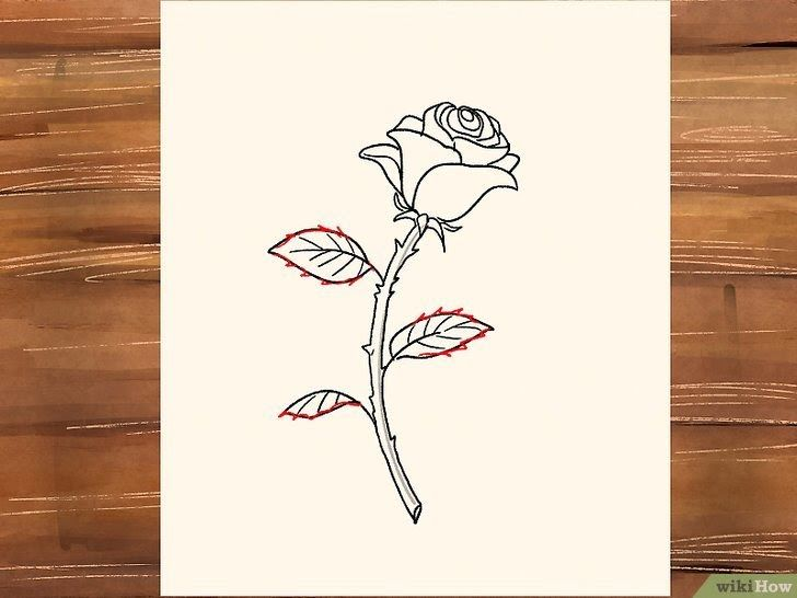 12 Mawar Sketsa Lukisan Bunga 3 Cara Untuk Menggambar Bunga Mawar Wikihow Download 50 Gambar Sketsa Bunga Indah Dan Lukisan Bunga Menggambar Bunga Sketsa