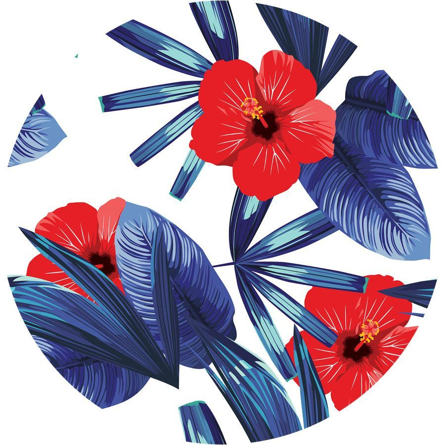 Hibiscus Circle Wall Decal  sc 1 st  Pinterest : hibiscus wall decals - www.pureclipart.com