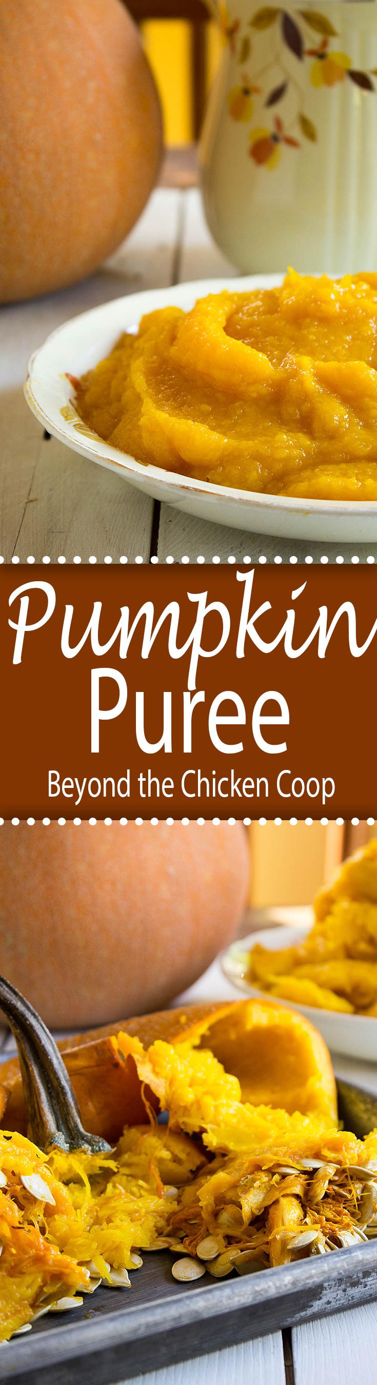 Make you own homemade pumpkin puree!