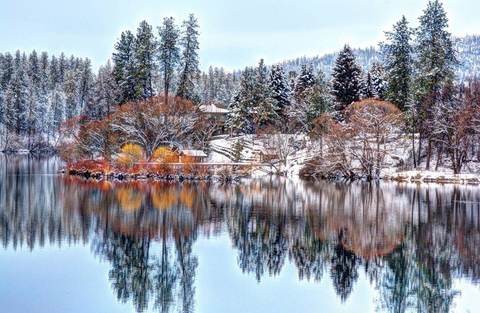 """Winter in 9 Mile"" by Mark Ament https://gurushots.com/notwhoiwuz/photos?tc=2f714573798c4445d3810149174a9e47"