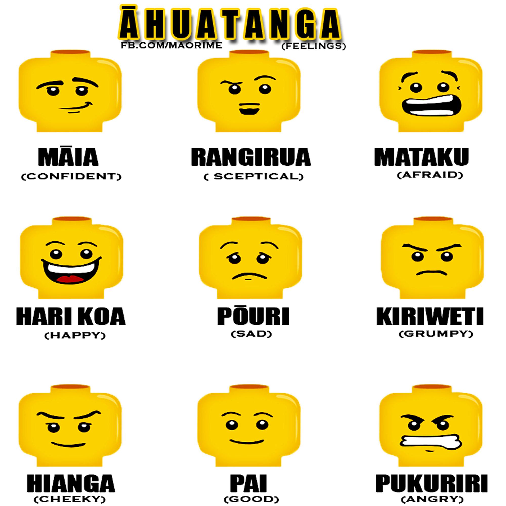 Ahuatanga Feelings