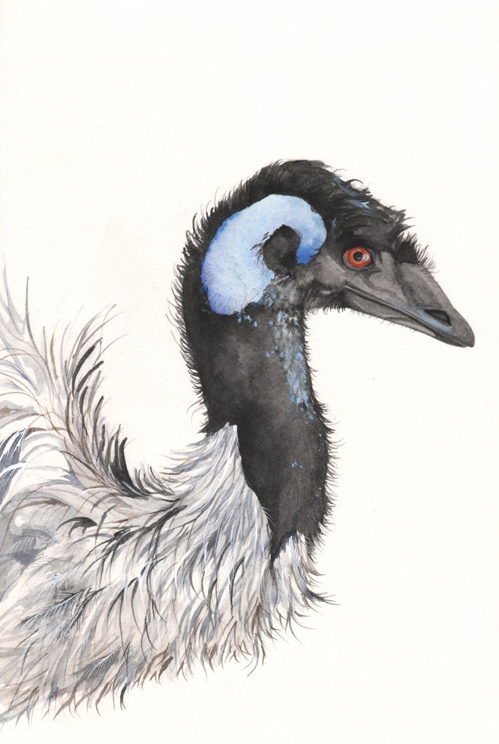 Emu Painting E050 Print of watercolor painting A4 by Splodgepodge