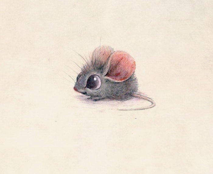 Красиво открытка, милые рисованные картинки животных