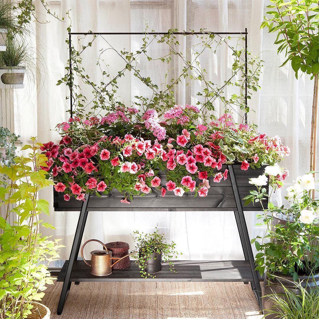 Gardenista must have  Dyrk blomster grøntsager og krydderurter på altanen i et højbed på benfta @hasselforsgarden   15% PRE-SALG RABAT på alle højbede  hele marts. >> Link i profilen  #højbede #gardenista #growyourown #dyrkbyen #urbangardencompany #byhave #stadsodling #altanliv