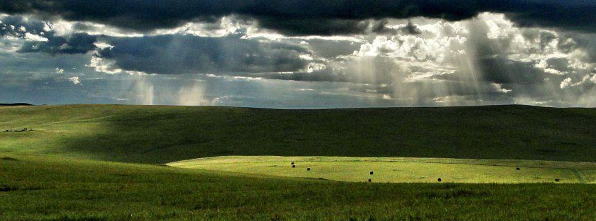 Bedrohte Hochebene: Seen in der Mongolei schrumpfen