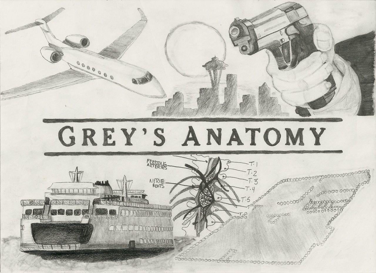 greys anatomy drawing - Google Search | <<GREYS ANATOMY ...