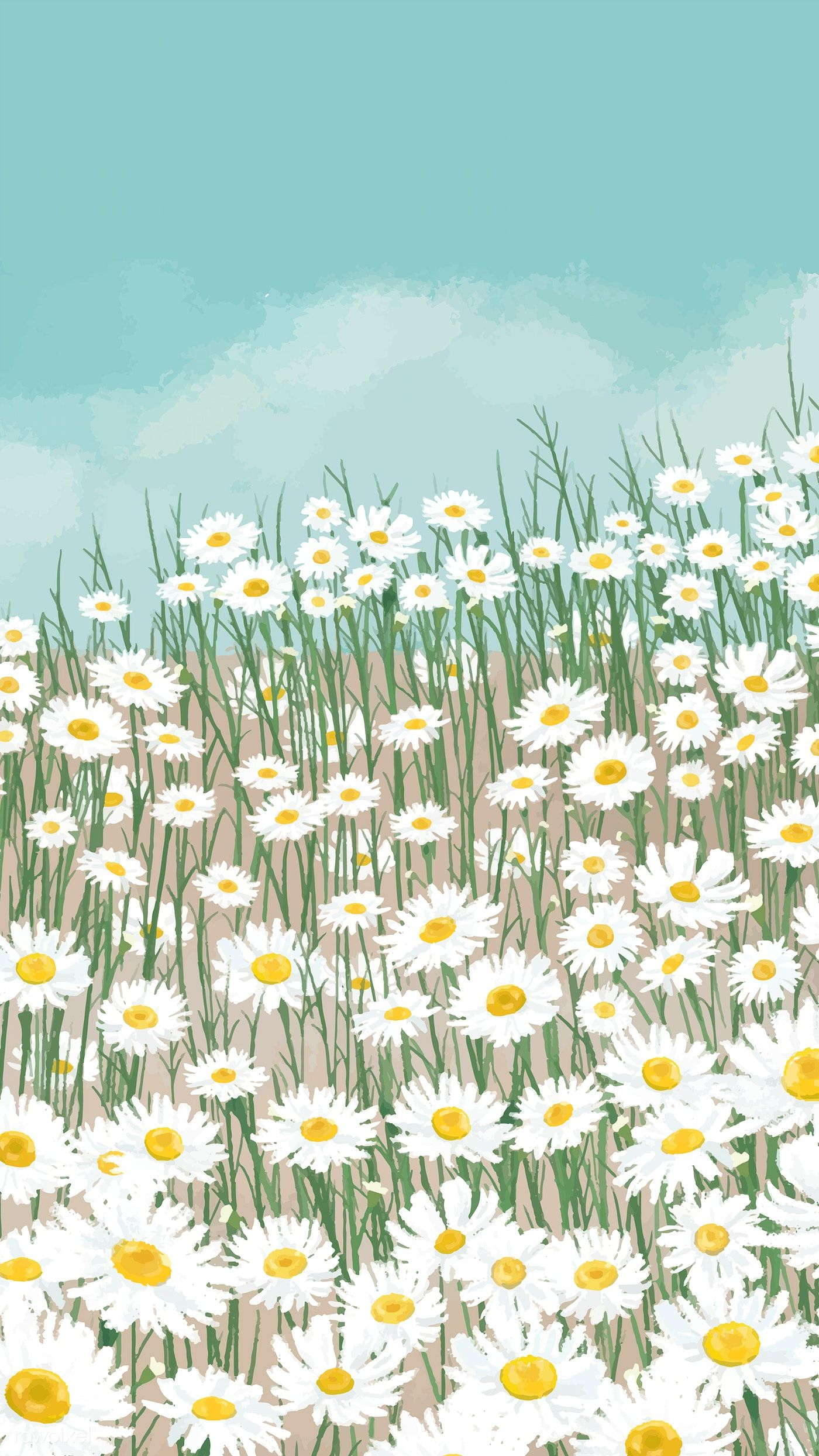 Download Premium Vector Of Blooming White Daisy Flower Mobile Phone Flower Phone Wallpaper Scenery Wallpaper Daisy Wallpaper