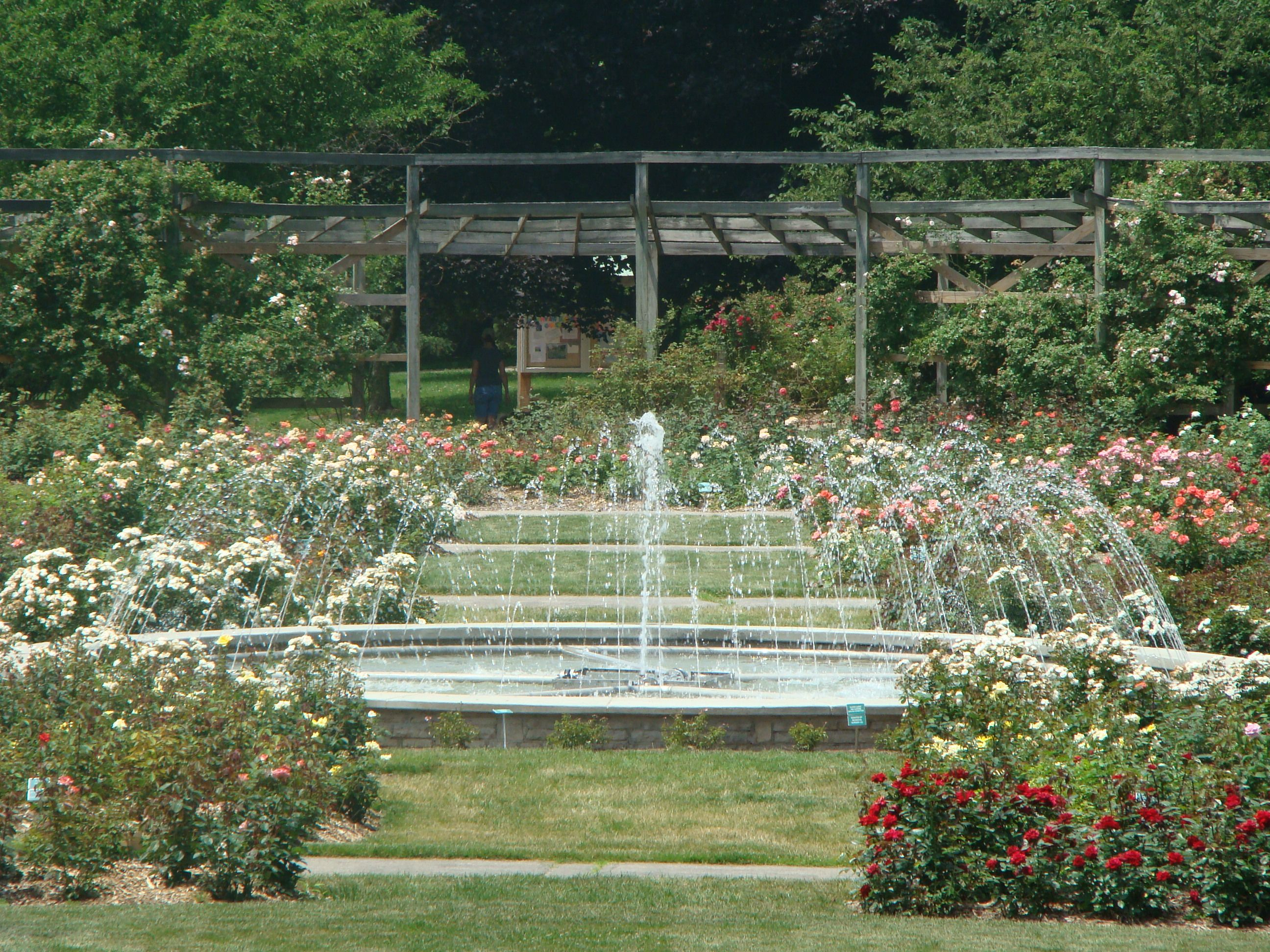 Park Of Roses Columbus Oh Columbus Ohio Photography Visiting