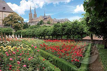 Bamberg Germany The Rose Garden Rosengarten The Neue Residenz