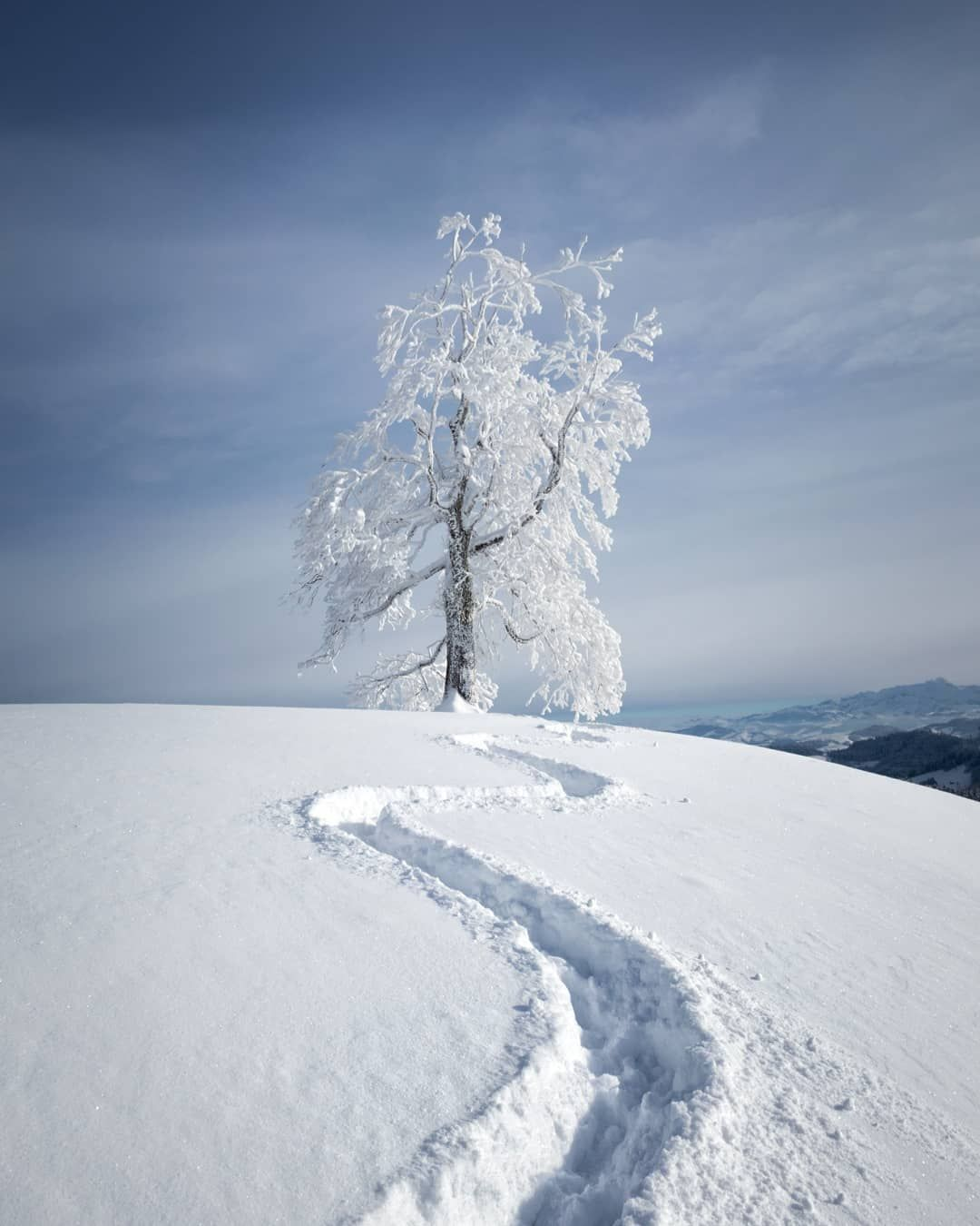 Trail In The Snow Switzerland By Sinu Sinhue Boksberger On I Mountain Landscape Photography Winter Landscape Photography Landscape Photography Nature