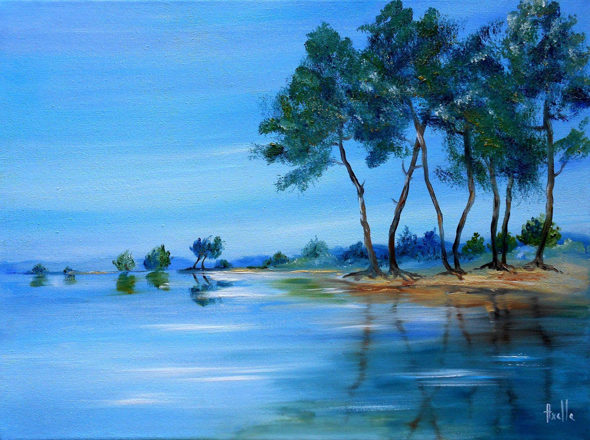 tableau bord de lac du c t de navarrosse peintures par peintures axelle bosler les. Black Bedroom Furniture Sets. Home Design Ideas