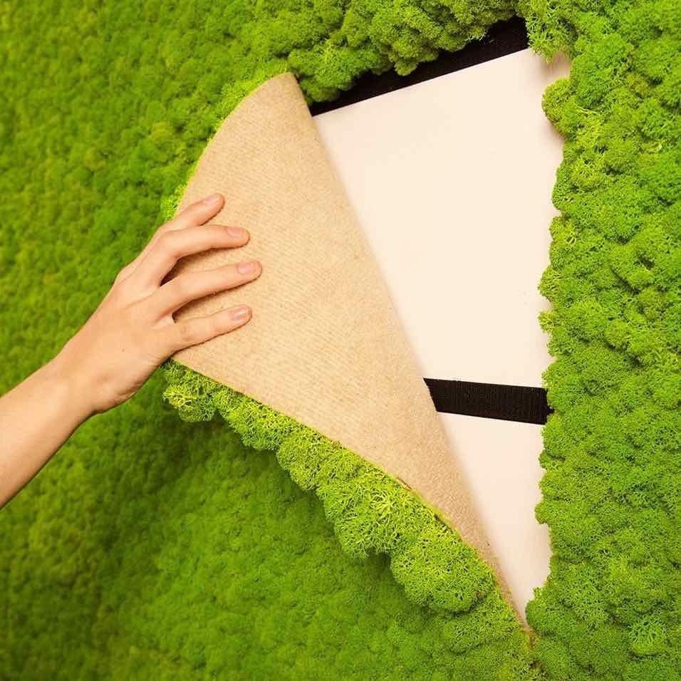 Living Wall Moss Tile Green 16x24 installation | bath tile ...