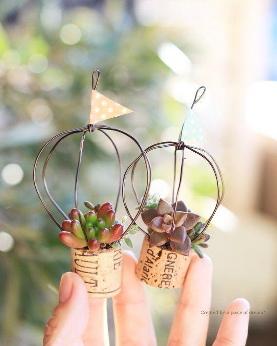 Photo of 簡単DIY!「さし穂」を楽しむ、多肉植物とコルククラフトをつくろう【hanaの植物あそび~vol.9~】 – HORTI 〜ホルティ〜 by GreenSnap
