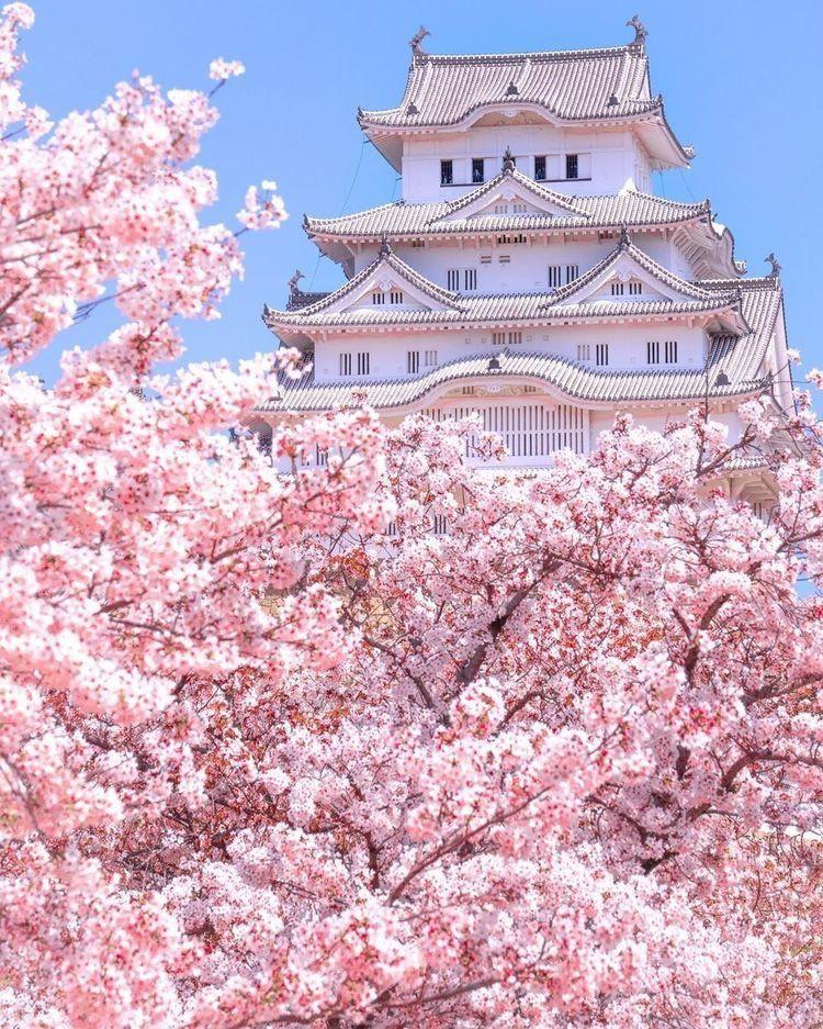 365 Locations On Twitter Himeji Castle Japan In 2021 Japanese Castle Aesthetic Japan Himeji Castle
