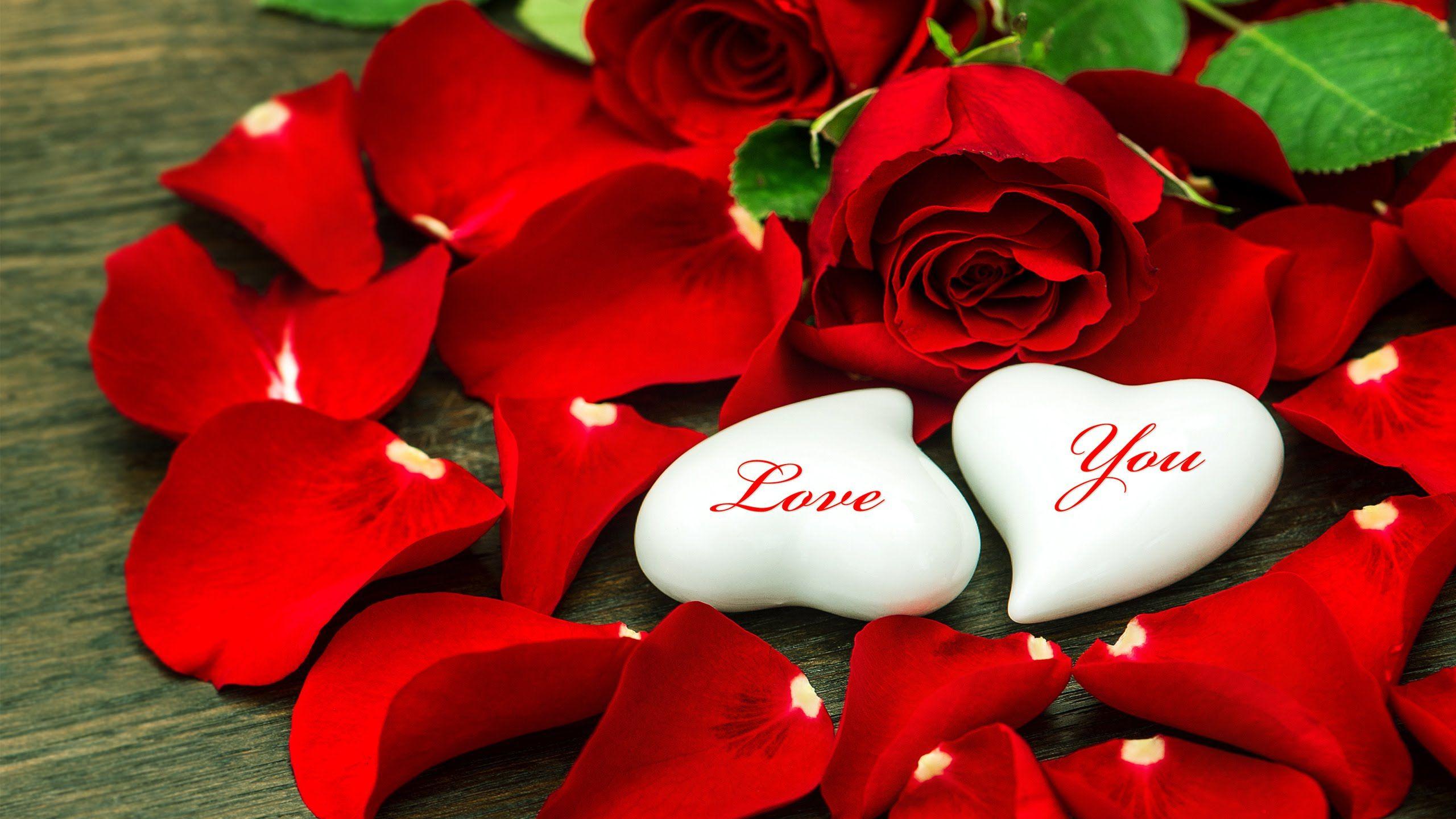 Love Song Endless Love The Best Relaxing Music Hd 1080p Flower Wallpaper Love Flowers Love Wallpaper