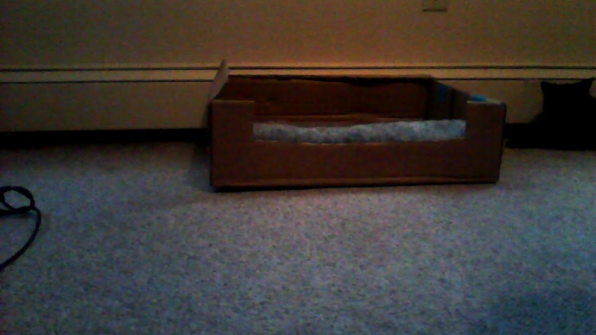 A homemade cat bed. I taped the opened end of the box shut, cut off the top, and cut the front down shorter so the cat can get in easier. You can put a cusion inside if you want, i folded a Purr Pad in half and put it in.