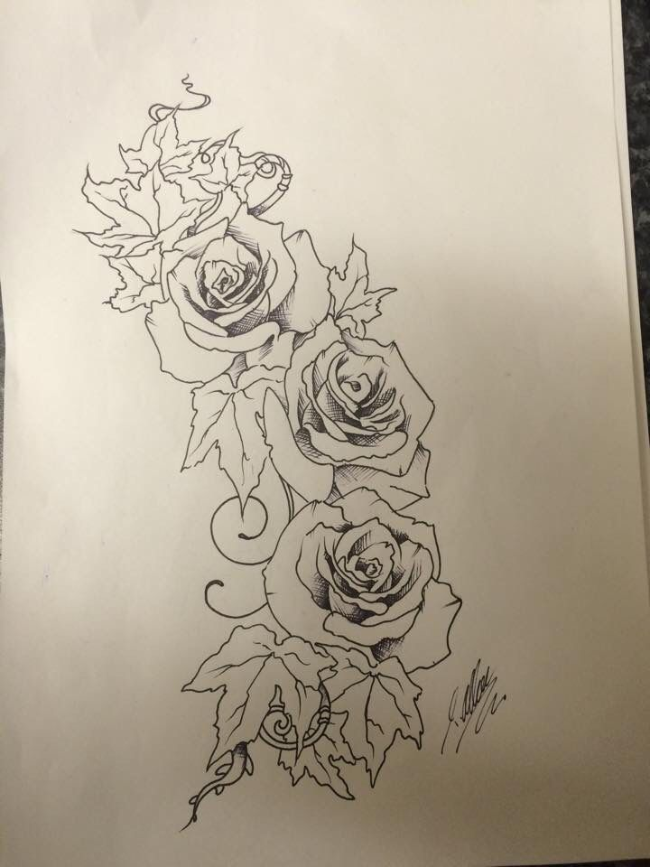 Line Art Rose Tattoo : Roses and ivy pen sketch for tattoo design i did by travis