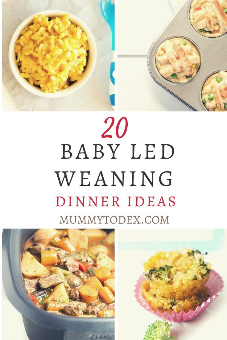 20 Baby Led Weaning Dinner Ideas | Mummy to Dex