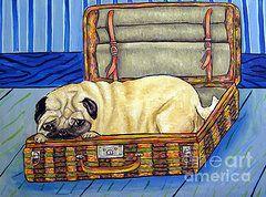 HAVANESE dog art PRINT gift giclee JSCHMETZ 11x14 salon modern pop folk