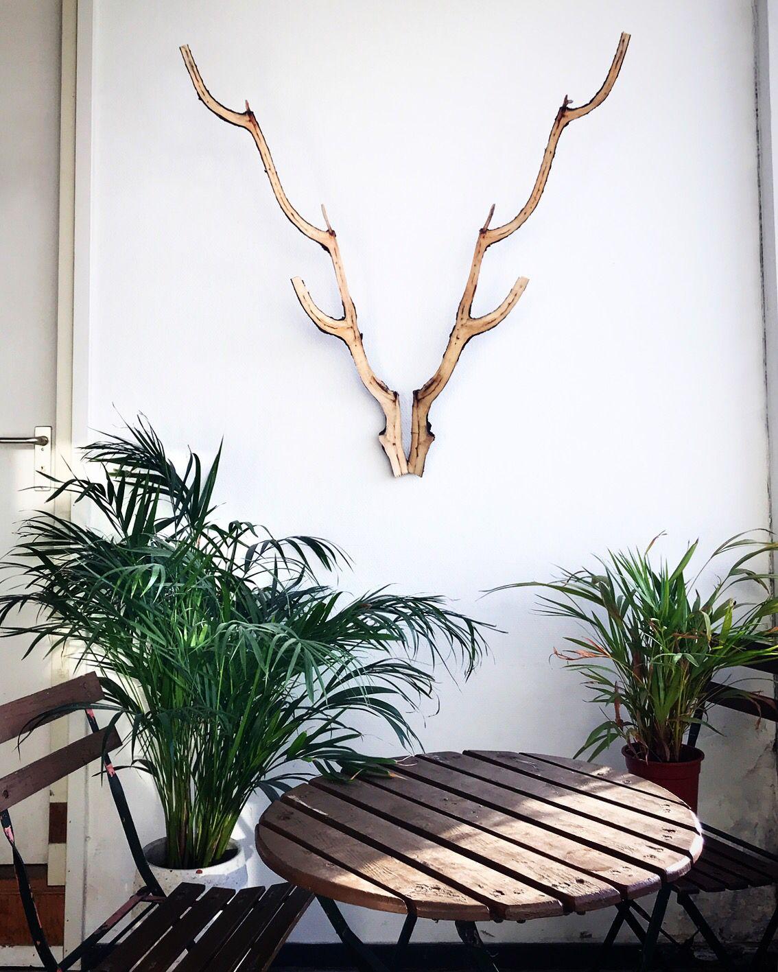 Geweldig Gewei Geweien Woonkamer Decoratie Interieur Woonkamer